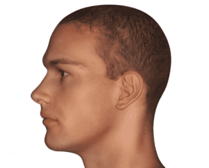 Rendering of Male Face